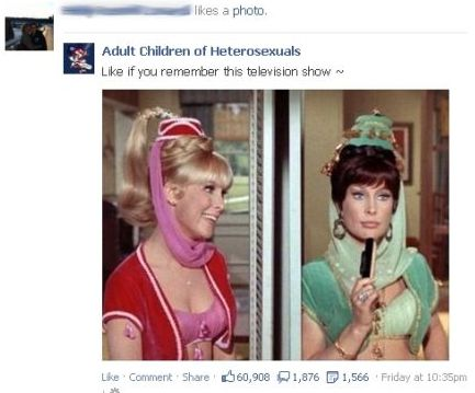 Facebook Like Buttons, Privacy Issues, and I Barbara Eden in Dream of Jeannie