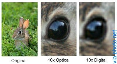Digital Zoom May Not Be As Bad to Your Photographic Media As You Thought