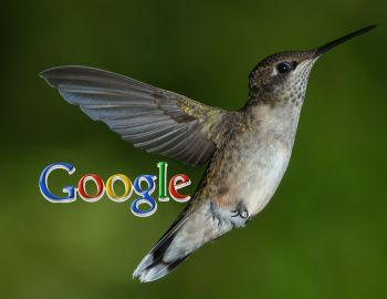 That Google Hummingbird is all about Semantic Search and The Knowledge Graph