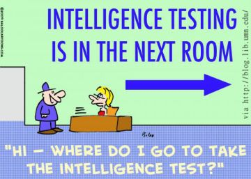 The Truth About Intelligence Typing